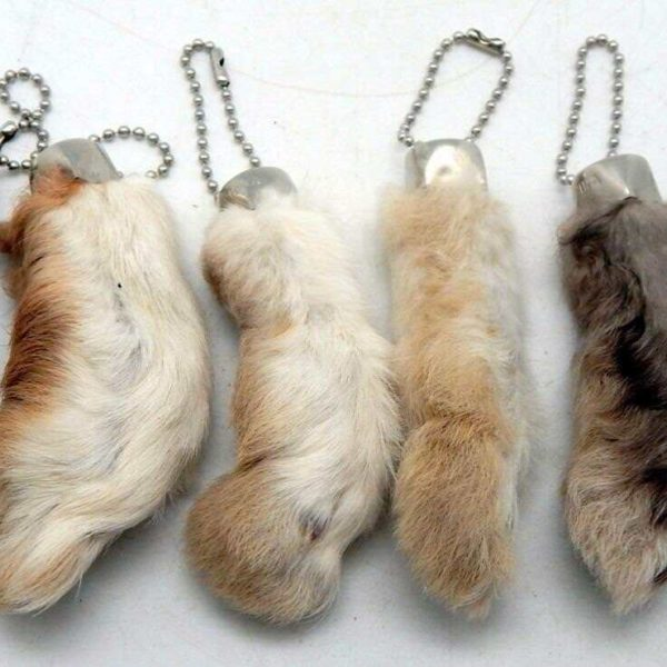 6 Natural Color Lucky RABBIT'S FOOT (Oryctolagus Cuniculus) Keychains New